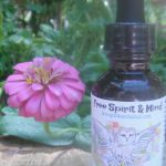 Wild Oats (Avena sativa) herbal tincture