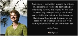 biomimicry-is-innovation-inspired-by-nature-in-a-society-accustomed-to-dominating-or-janine-benyus-79-42-08