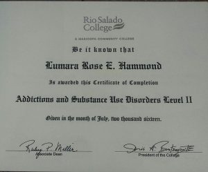 Degree in Substance abuse II